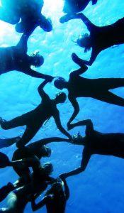 Mit freien Delfinen Schwimmen Hawaii