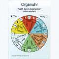 Grafikkarten Reflexzonen – Organuhr – A4