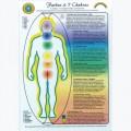 Farben und 7 Chakras, A5